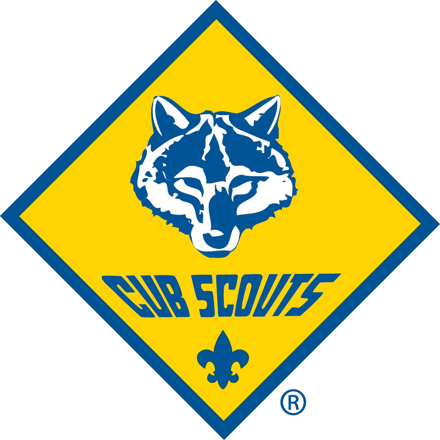 Cub Scout Pack 245